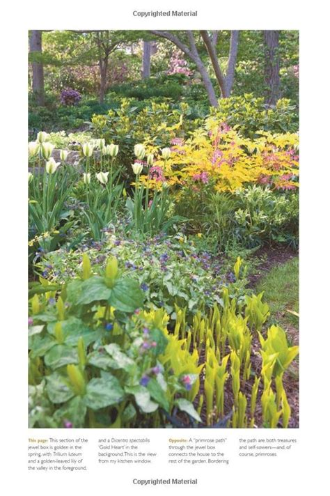 amazon garden l the layered garden design lessons for year round beauty