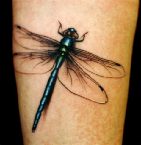 dragon tattoos meaning dragonfly