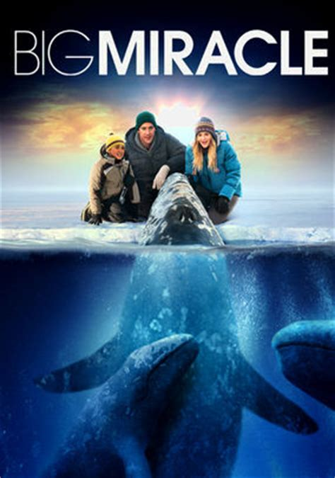 Big Miracle Free Big Miracle 2012 For Rent On Dvd And Dvd Netflix