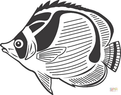 Free Printable Fish Coloring Pages by Sea Fish Coloring Pages
