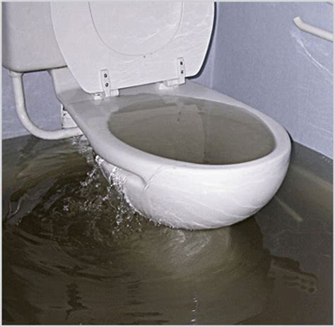 toilet and bathtub backing up plumbing services call us for more information