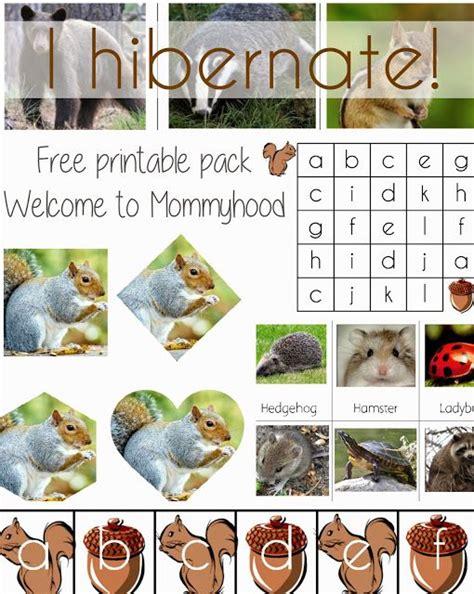 kindergarten activities hibernation science activities for preschoolers and toddlers