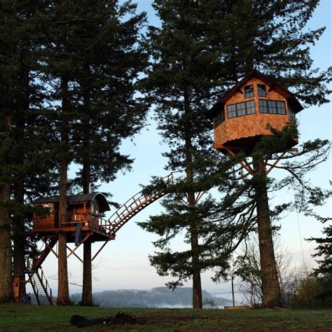Treehouse Cottages Tree House Cottage Small Treetop Tiny Houses With Skatepark