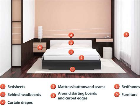 can bed bugs spread from room to room how to prevent bed bugs when travelling at easter