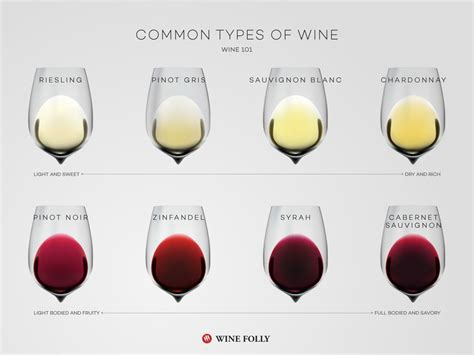 Different Types common types of wine top varieties to wine folly