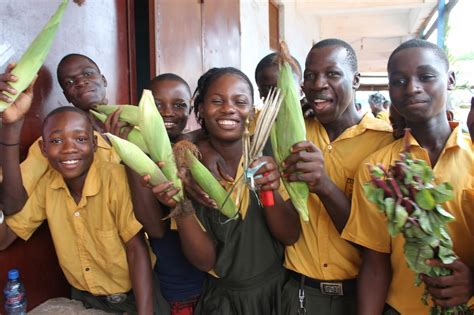 student farmers in liberia get back to the soil and into the classroom goodfood world