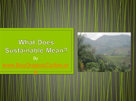 what does it mean to buy a house in foreclosure what does sustainable mean