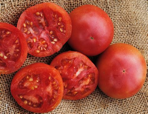 eva purple ball tomato   southern exposure seed