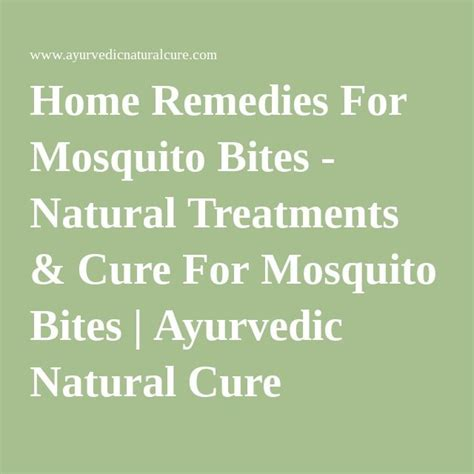 25 best ideas about remedies for mosquito bites on