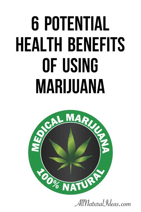 the marijuana growers guide natures pharmacy organic no till cannabis cultivation from seed to harvest books marijuana properties benefits all ideas