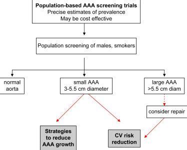 management strategies for cln2 disease sciencedirect photos abdominal aortic aneurysm management anatomy