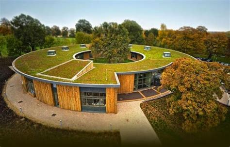 green roof echo of the past latest trends in green building of roof