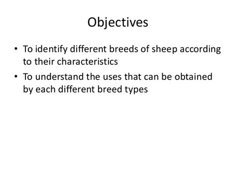 different breeds and their personalities different breeds of sheep and their characteristics