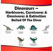 Herbivores Carnivores And Omnivores  Wwwpixsharkcom