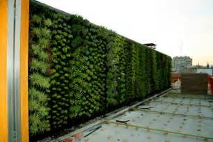 jardines verticales lo m 225 s nuevo en decoraci 243 n