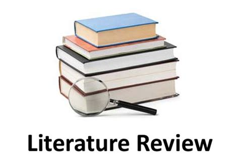 Nyu Library by Writing Literature Review Services