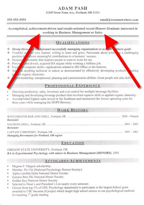 Objective In Resumes resume objective statement resume templates