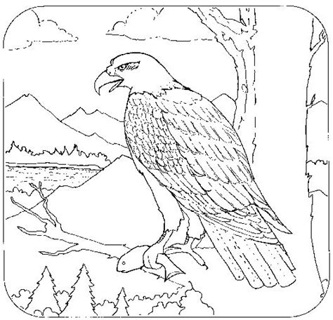 coloring book for adults philippines 137 best images about animal coloring book on