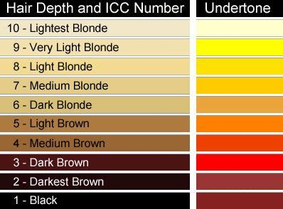 level 10 hair color 17 images about color levels 1 10 on brown