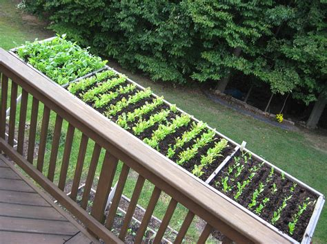 deck gardening containers cool container vegetable gardens of maryland