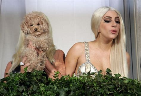 Donatella Versace To Design The Next Spice Tour Wardrobes by Gaga Pictures Gaga And Donatella Versace On