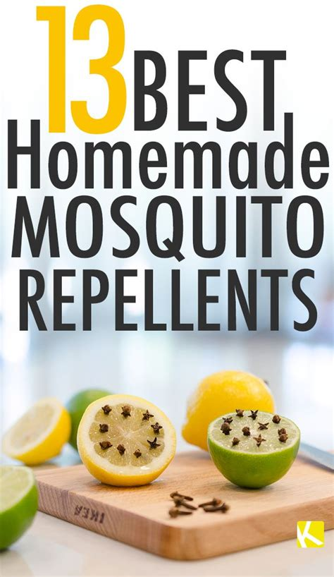 best mosquito repellent backyard 20 best ideas about mosquito trap homemade on pinterest