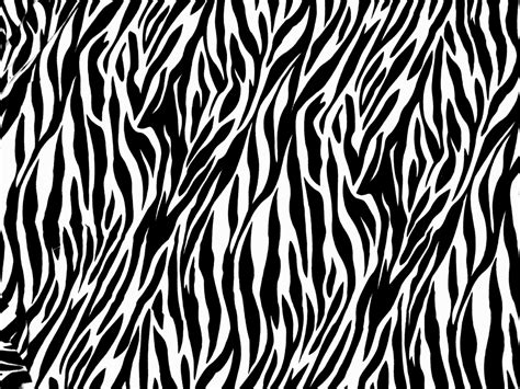 tiger stripe pattern black and white white tiger stripes pattern