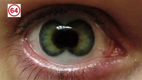 creepy colored contacts scary contact lenses www pixshark images galleries