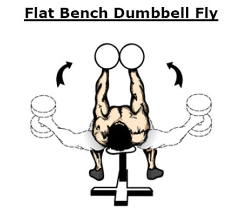 flat bench dumbbell flys one rep max bench press test crossfit workout routines