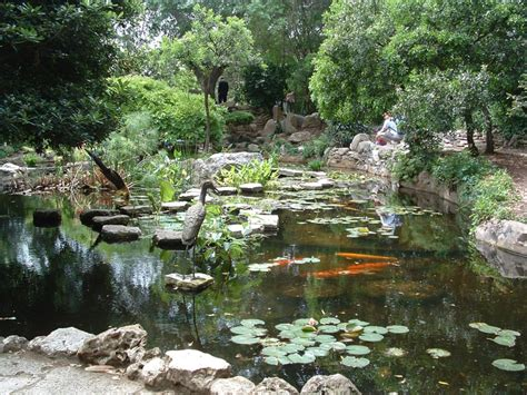 flower gardens in houston fabulous flowers gardens and arboretums in and