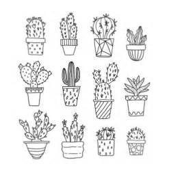best 25 cactus drawing ideas on pinterest cactus art