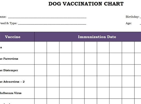 Puppy Vaccination Schedule Printable vaccination chart printable template productivity