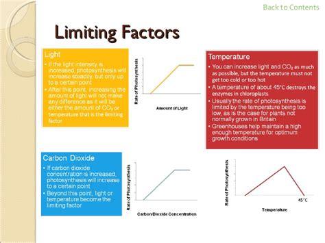 Limiting Factors Worksheet by Gcse Biology Revision
