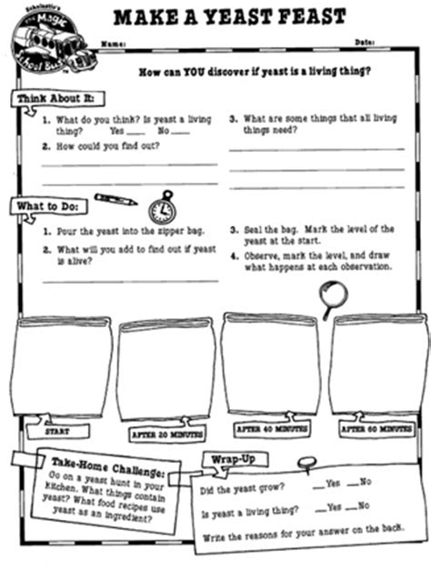Magic School All Worksheet by 1000 Images About Living Nonliving Things On