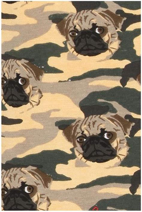 camo pug outfitters camo pug boxer brief in green for olive lyst