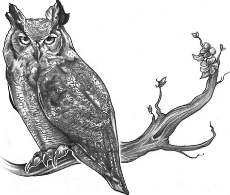 owl tattoo drawing best owl designs gallery