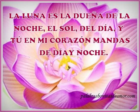 imagenes bellas y romanticas search results for frases romanticas para mi novia
