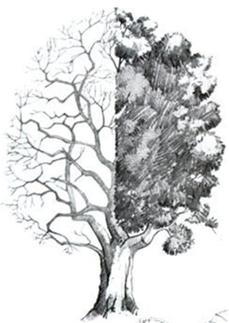 imagenes a lapiz de arboles como dibujar paisaje a lapiz dibujo a lapiz de paisajes