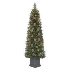 home depot alexandria pine tree 4 5 ft pre lit artificial wesley spruce potted artificial tree with clear lights