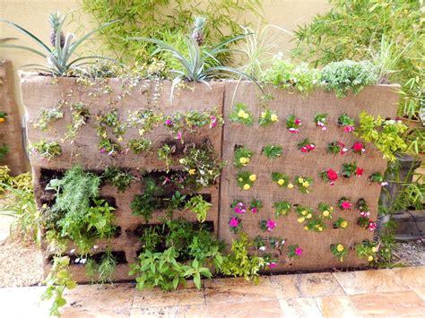 vertical gardening ideas photograph diy vertical