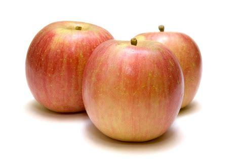 apple fuji organic fuji apples in kilos from real foods