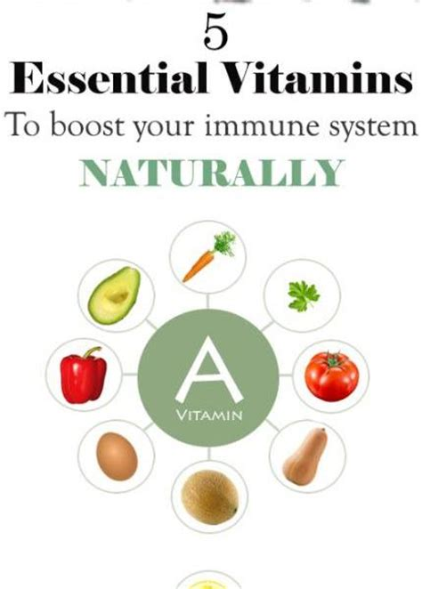 build your immune system fast proven immune boosters healthy anti cancer recipes homeopathic remedies probiotic yogurt recipes herbal tea and detox and strong immunity series volume 3 books 5 essential vitamins to boost your immune system naturally
