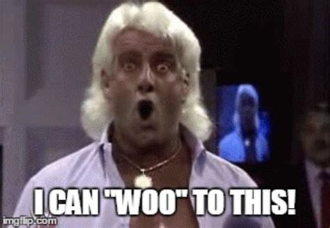 Ric Flair Memes - i can woo to this professional wrestling know your meme