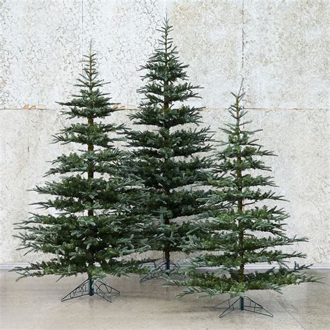 25 best ideas about noble fir tree on pinterest balsam