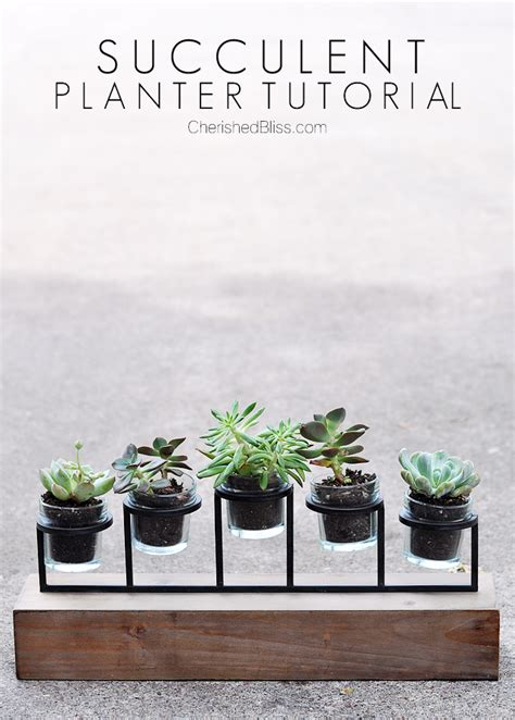 diy succulent planter diy succulent planter tutorial cherished bliss