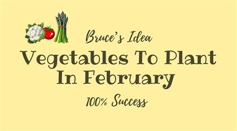 vegetables to plant in february vegetables to plant in february and 100 success