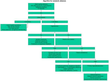 metabolic alkalosis: practice essentials, pathophysiology