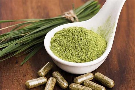Best Way To Detox From Kratom Fst by How To Use Kratom Mitragyna Speciosa Powder Effectively
