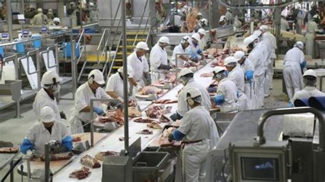 kisah anak anak muda indonesia bekerja keras  pabrik