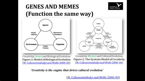 Memes And Genes - storyality 69 storyality theory 20 min paper i and i